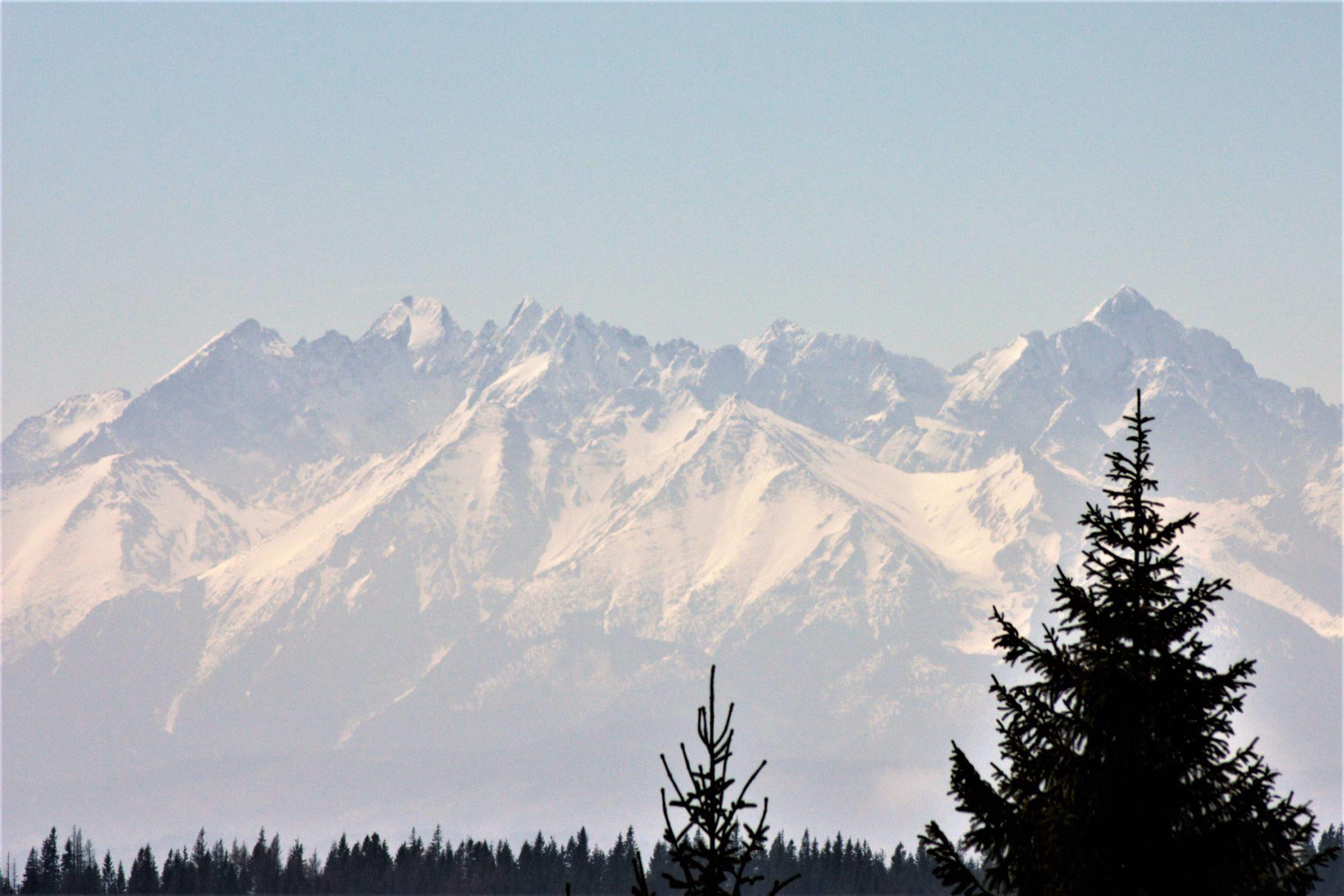 prawo w górach