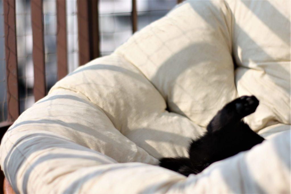 Obudź się z zimowego snu! 10 pomysłów na wiosnę