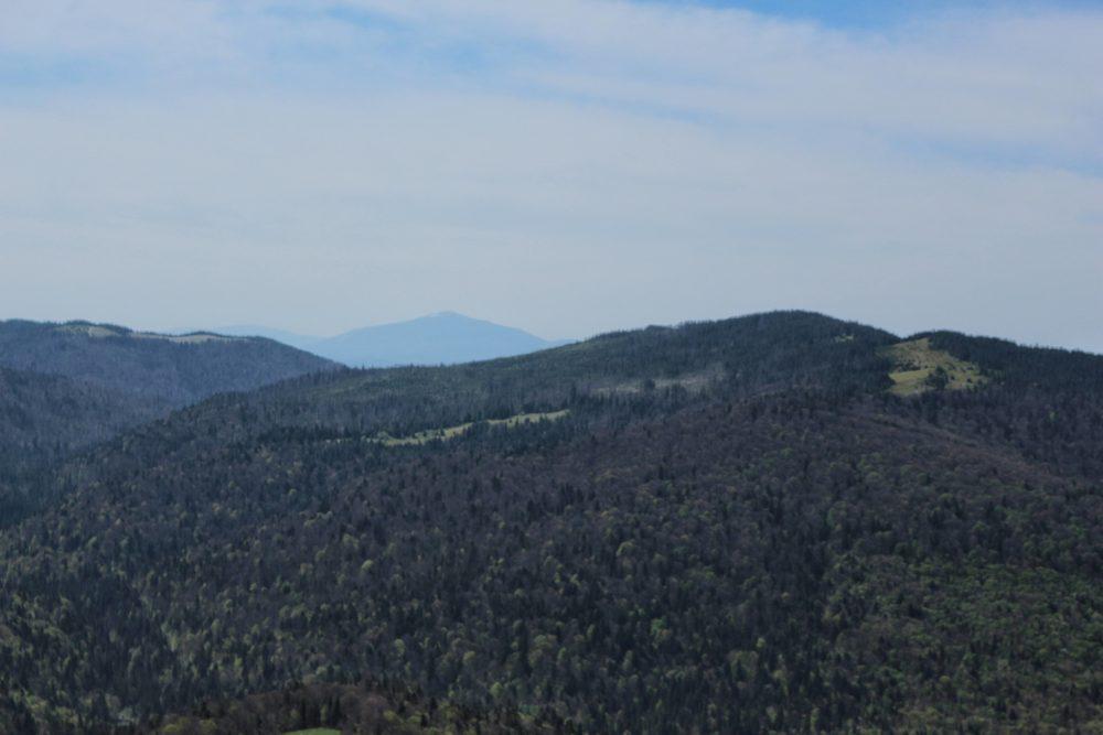 Widok z Gorca
